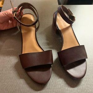 JCrew dark brown leather sandals sz 9